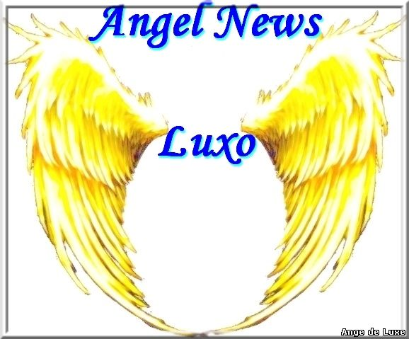 Logo Angel News Luxo